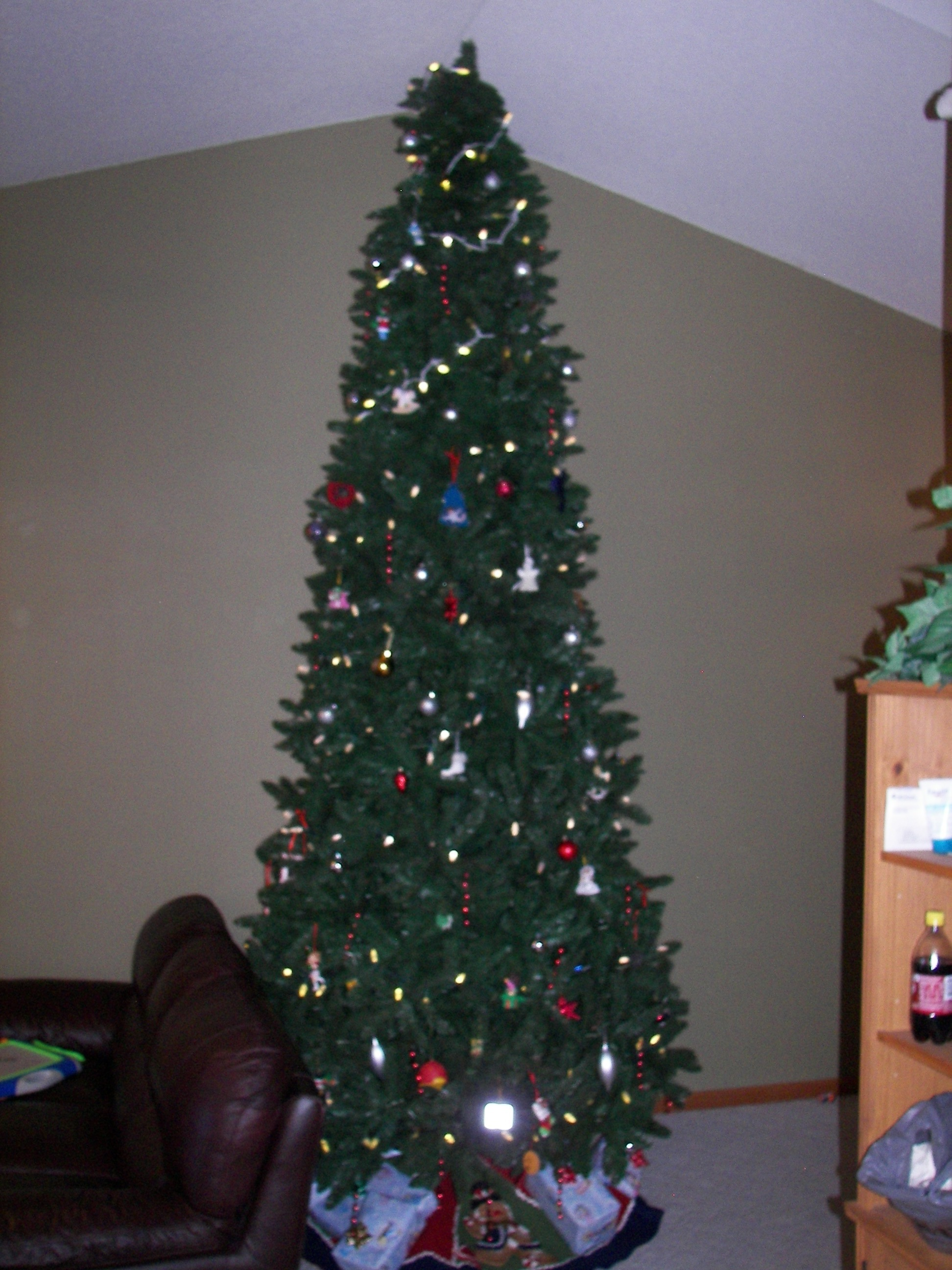 12 Foot Christmas Tree.The Story Of The 12 Foot Christmas Tree Anthony And Kayla